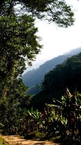 The road down into the valley towards Despraiado and Iguape
