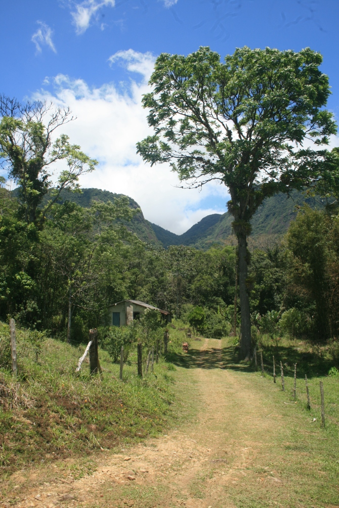 Christina's Valley